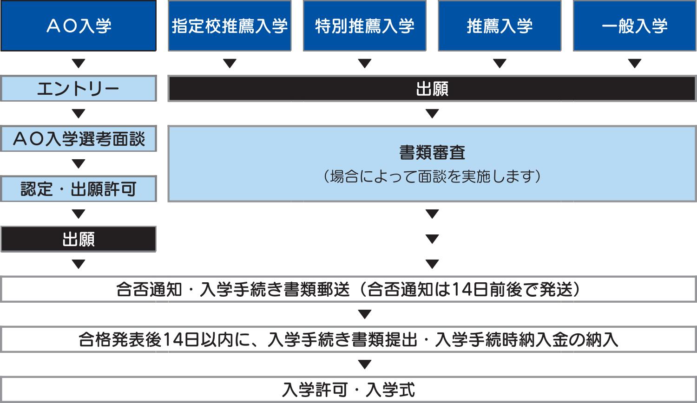 entry-flow_2020
