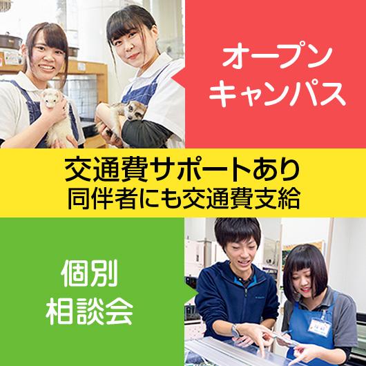 オープンキャンパス・土・日・祝日個別相談会