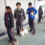 小学校 犬のふれあい訪問
