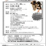 2015.11.18(水)「愛され顔の作り方」セミナー開催!!