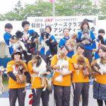 訓練実習のパートナー【DogTrainer】