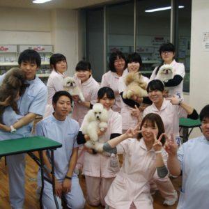 仙台放送「みんなのニュース」に出演しました!