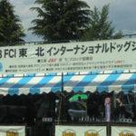 FCI東北インターナショナルドッグショー見学!!