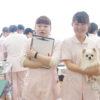 動物衛生看護科~犬の一般身体検査実習~