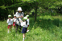 自然とのふれあいと季節感を大切にする保育