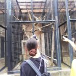 こども科2年生☆動物園に行って来ました=3